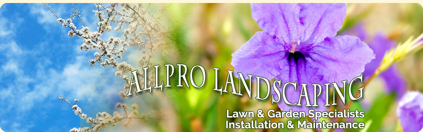 white rock landscaping